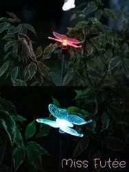 Beaux papillons recharge solaire lumière extérieure