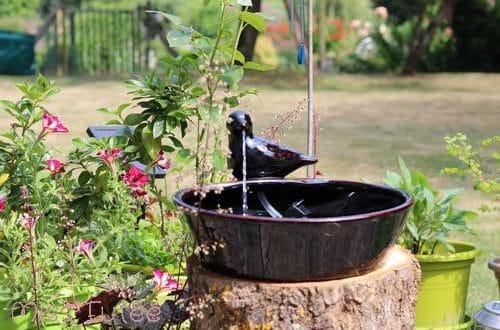 Test d mo fontaine solaire zen ext rieure for Fontaine solaire exterieur jardin