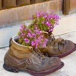 De vielles chaussures utilisées comme pots