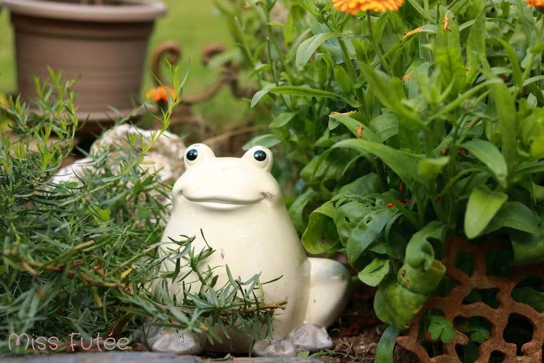 Jolie grenouille pour décorer votre jardin