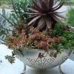 Passoire réutilisée en pot de fleurs original