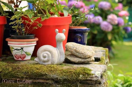 Petit escargot en déco jardin