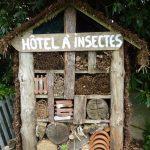 Hôtel à insectes fait maison