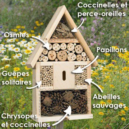 Hôtel à insectes descriptif
