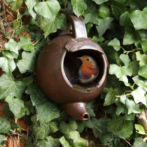 Nid pour les oiseaux avec une vieille théière