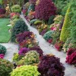 Parterres avec associations de couleurs de plantes