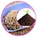 Opter pour une litière agglomérante et biodégradable