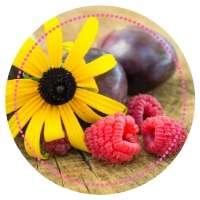 Rester en bonne santé avec des produits naturels