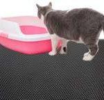 Un tapis plus large que le bac à litière